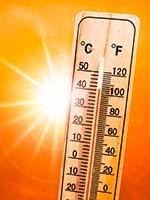 Palm Springs Heat